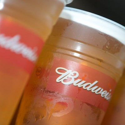 Pints+of+budweiser+in+disposable+cups+at+Fitzers+Catering
